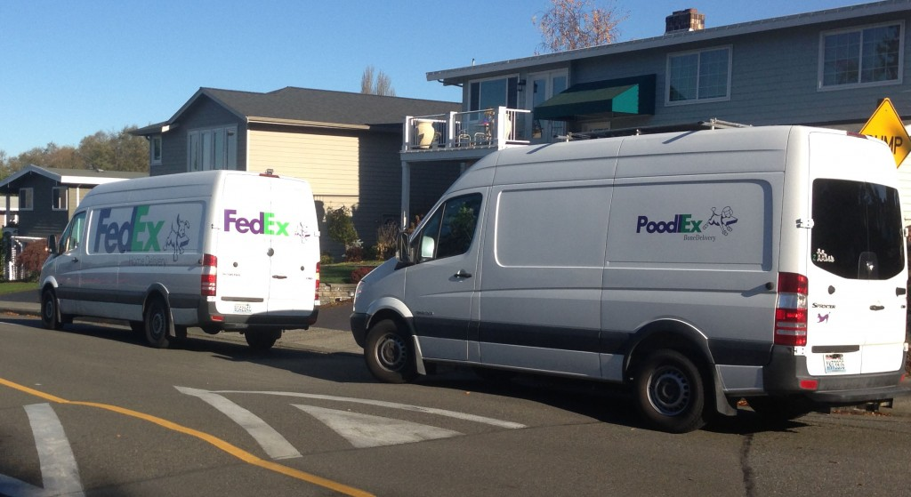 poodlex-vs-fedex